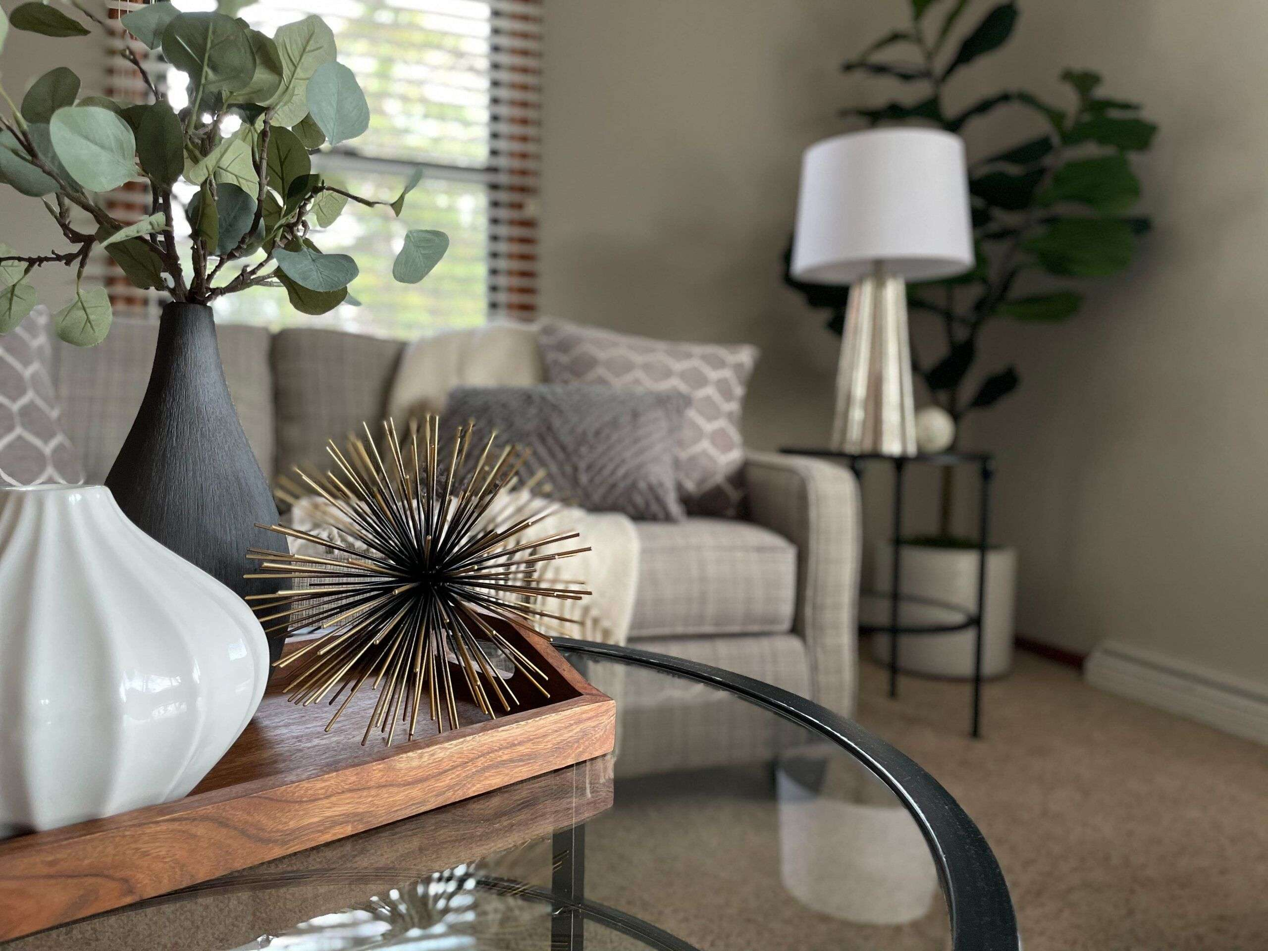 Bloomington | Home Staging | Vacant | Design | Minneapolis | Living Room